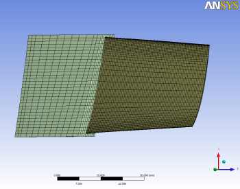 Finite element (FE) mesh