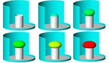 mushroom simulation